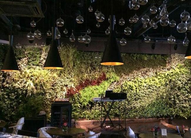 Green酒吧室内垂直绿化