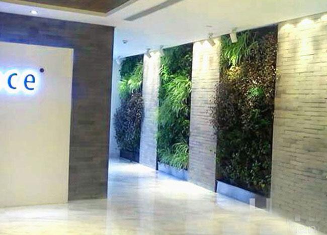 合兴联创广场室内垂直绿化