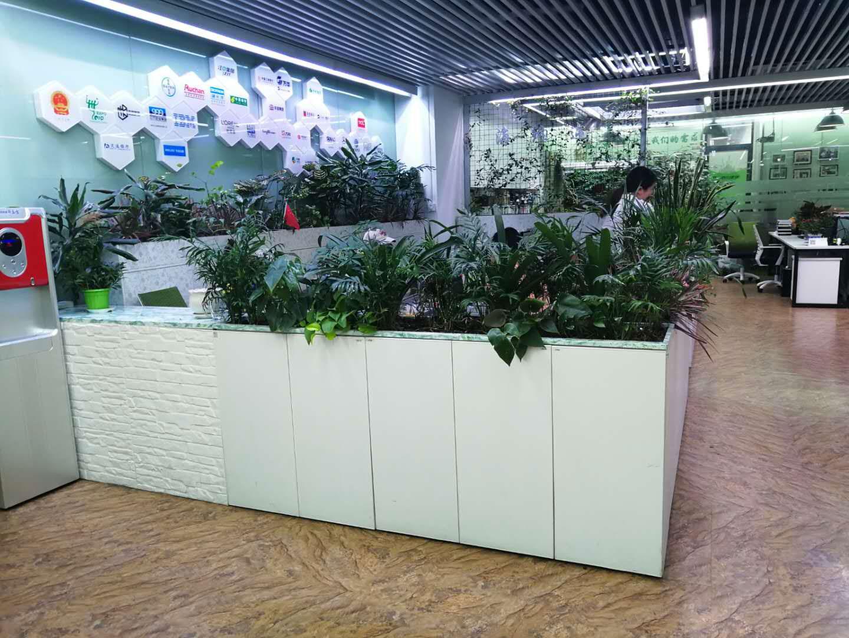 �k公�^域植物家具